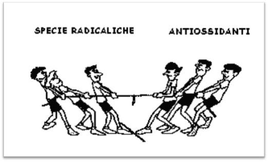 immagine.stress.ossidativo.art.dott.ssa.de.liso