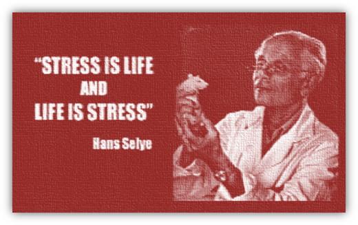 immag.stress.quando.comincia.art.dr.gatta