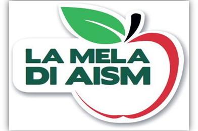 immag.mela.di.aism