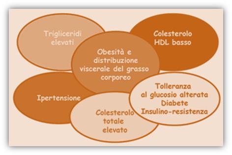 immag.sindrome.metabolica.art.drssa.spataro