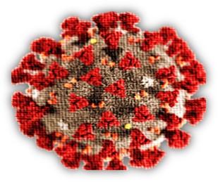 immagine-coronavirus
